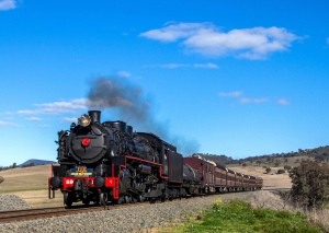 Kiama Picnic Train 2015