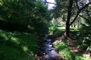 Jerrara Creek