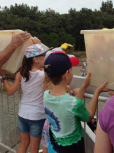 Local children set the ducks on their way